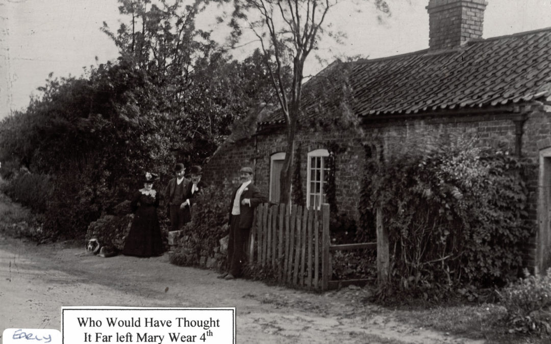 Cottage in 'Who Would Have Thought It' on Stillingfleet Road