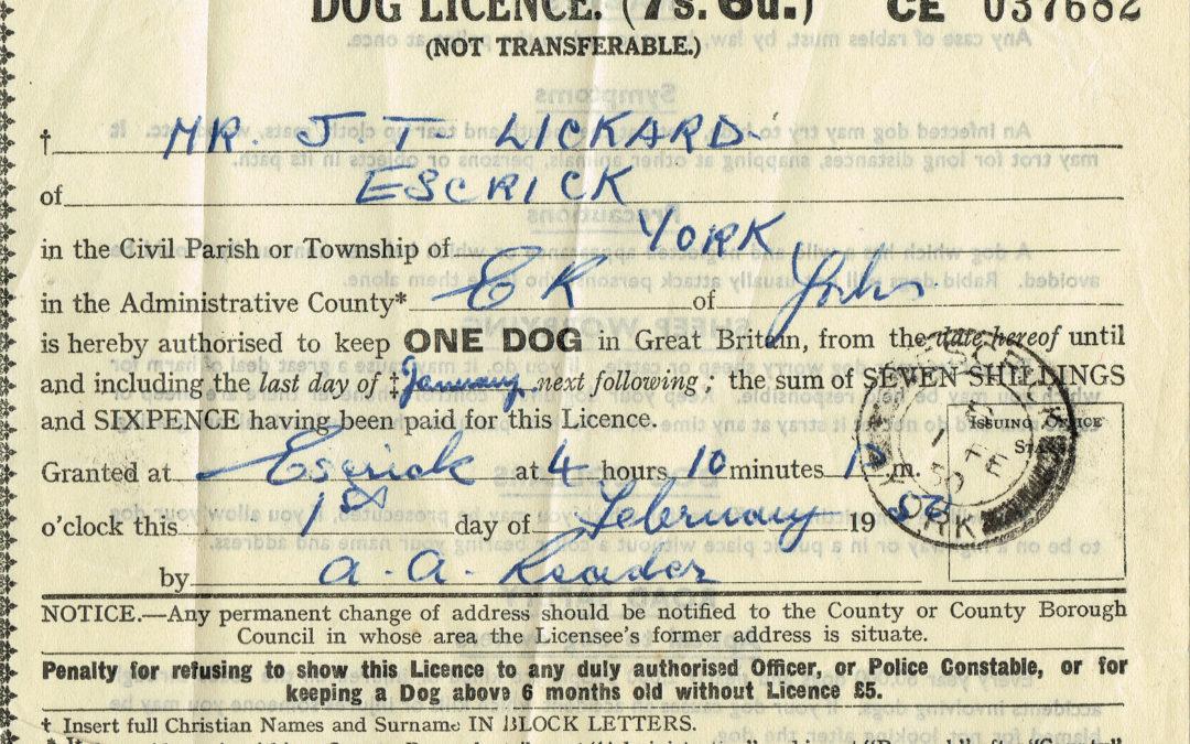 Dog Licence – 1956