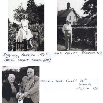 Davison and Colley family. - 1950 to 1957