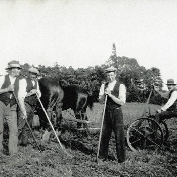Farm Hands at Bridge Farm Escrick, 1931