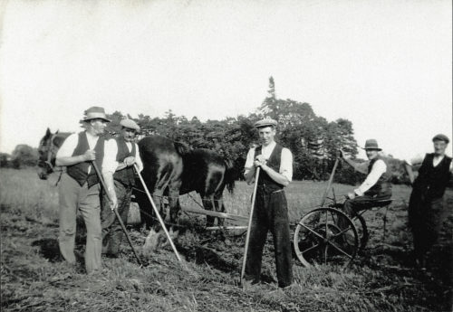 Farm Hands at Bridge Farm Escrick, 1931