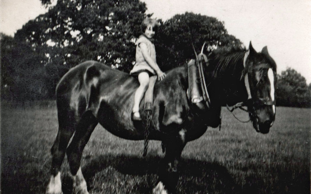 Dorothy on Shire Horse, Bridge Farm Escrick. July 1931