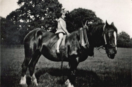Dorothy on shire horse, Bridge Farm Escrick. July 1931