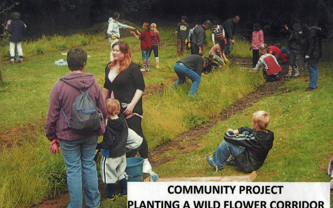 Escrick Community Project – planting a wild flower corridor