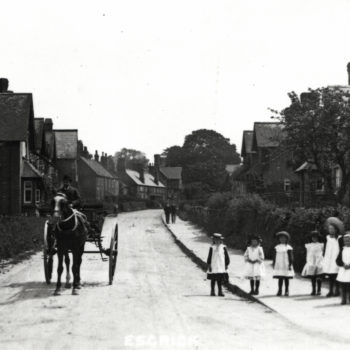 Sefton Tomlinson (Chair of Parish Council) in Horse & Trap c1900