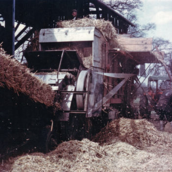 Combine Harvester at work - Mount Farm Escrick 1950