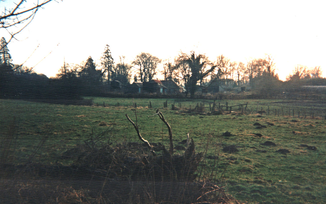 Field at Carrs Meadow – Now the Village Green