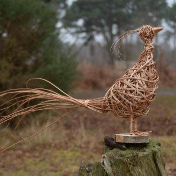 Willow Weaving Pheasant Workshop.  2nd October.